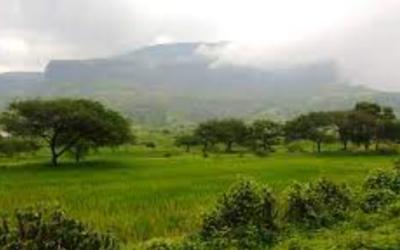 Anjaneri Hills का इतिहास – Anjaneri Hills पहुंचने के लिए सरल मार्ग